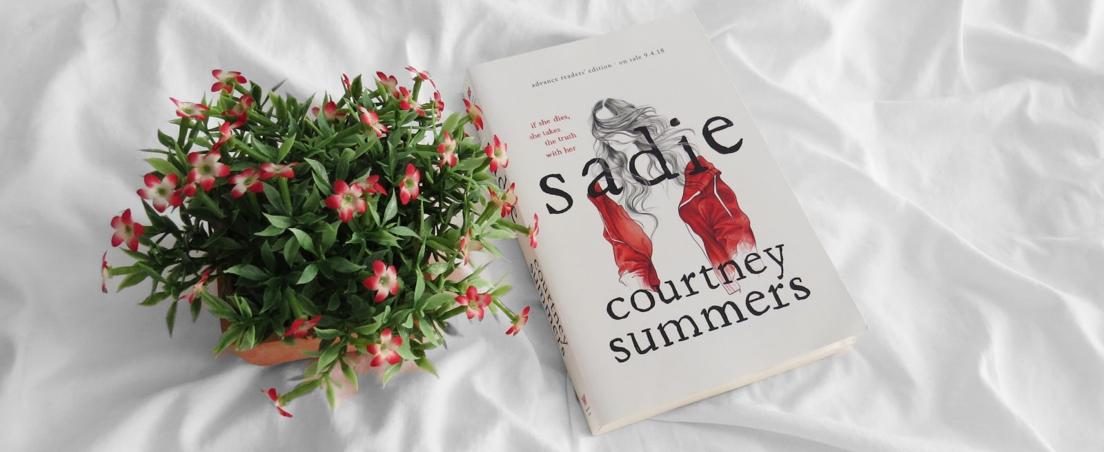 Blog Tour | Sadie by Courtney Summers Review + Q&A