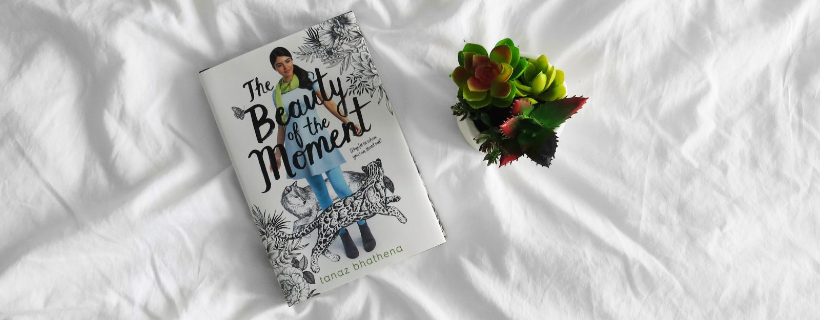 Blog Tour | The Beauty of the Moment by Tanaz Bhathena Review + Q&A